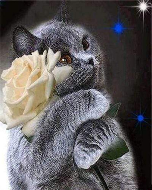 5D Diamond Painting Gray Cat and a Yellow Rose Kit