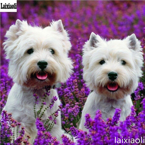 5D Diamond Painting Two Westies in the Lavender Kit
