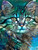 5D Diamond Painting Abstract Blue Green Cat Face Kit
