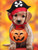5D Diamond Painting Pirate Trick or Treat Puppy Kit