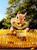 5D Diamond Painting Corn Tooth Chipmunk Kit