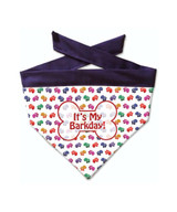 Dog Birthday Bandana Rainbow Paw Print