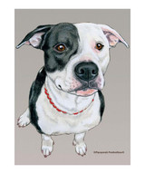 Black & White Pit Bull Garden Flag