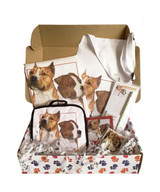 My Special Amstaff Box – Kitchen Set