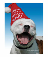 Santa Don't Forget Me Pit Bull Christmas Cards (Pack of 10)