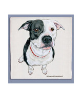 Pit Bull Dishtowel (Black & White)