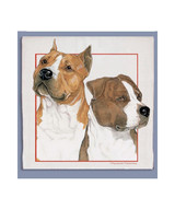 Pit Bull Dishtowel (Am Staff)
