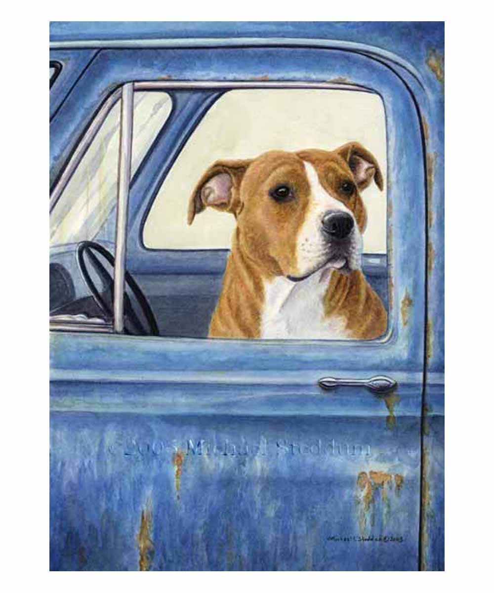 Pit Bull Note Cards