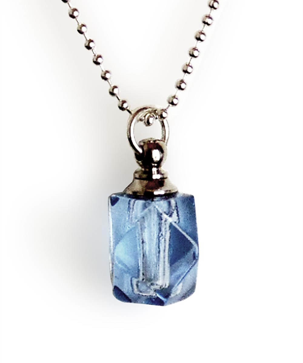 Dog Ash Vial Memorial Necklace
