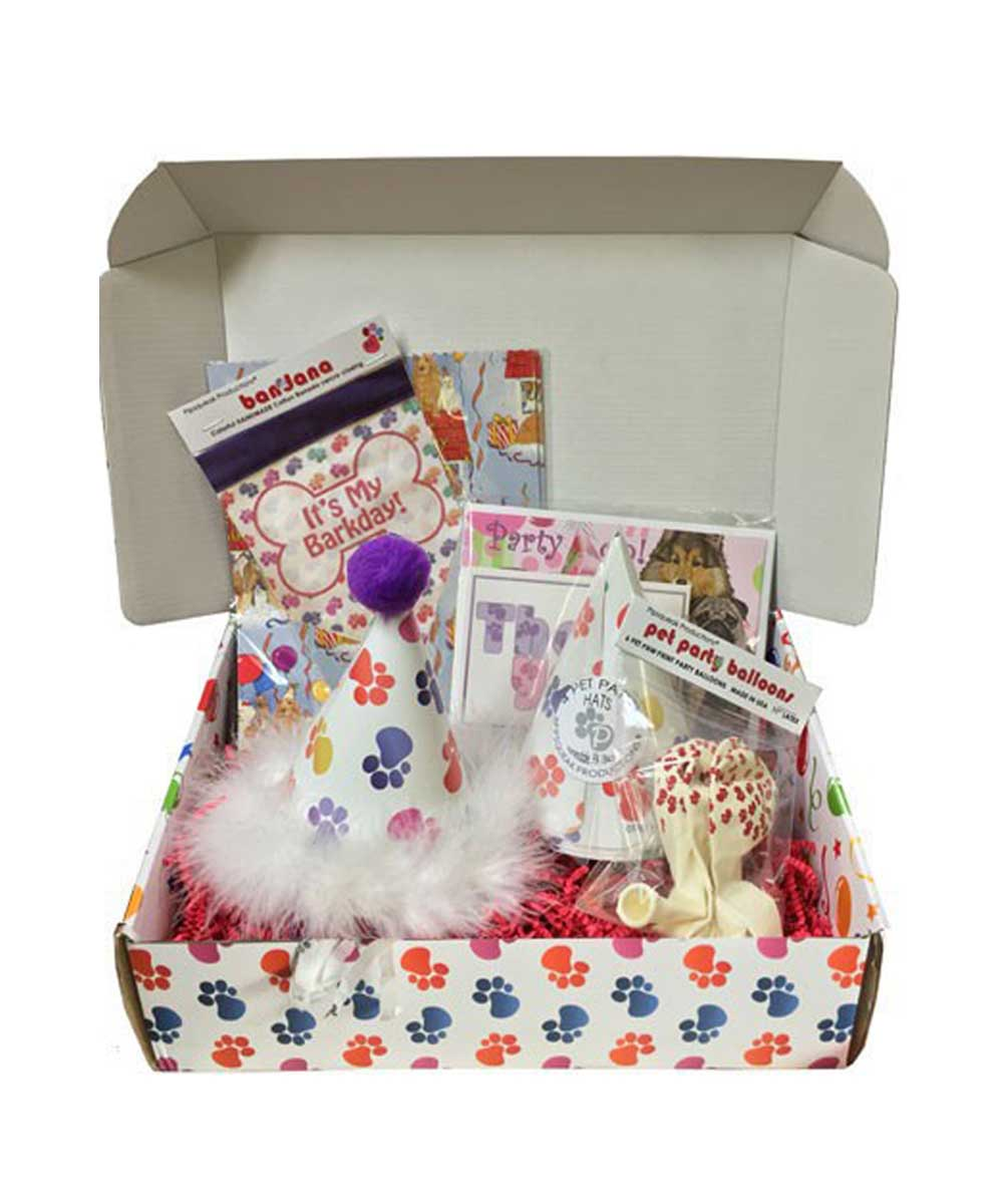 Dog Birthday Party in a Box Kit