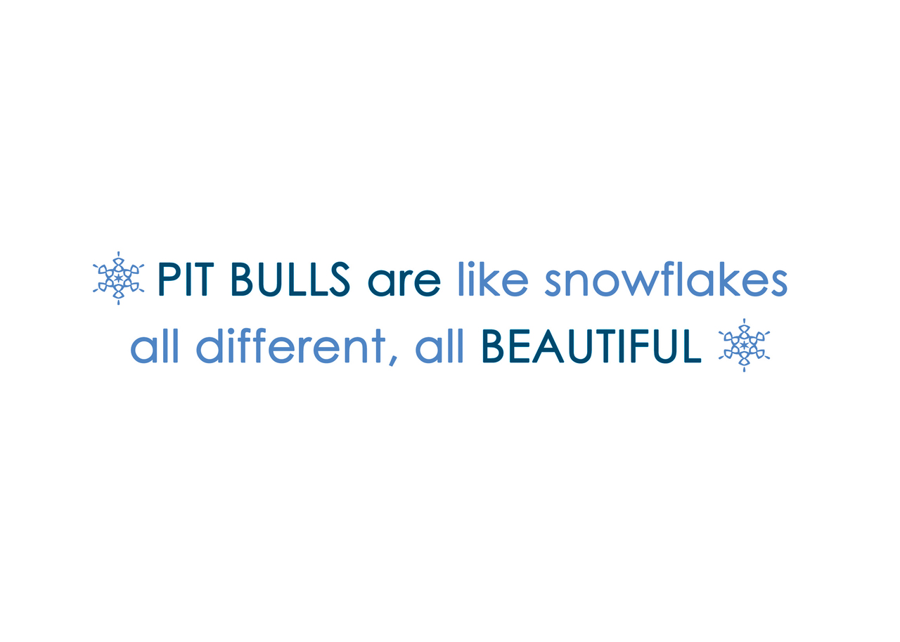 Pit Bulls Are Like Snowflakes Holiday Cards (Pack of 10)