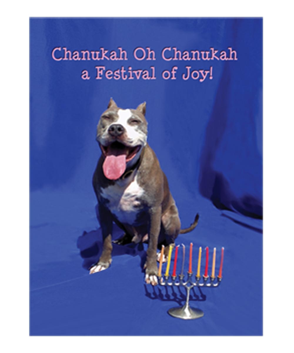 Festival of Joy Hannuka Pit Bull Cards (Pack of 10)