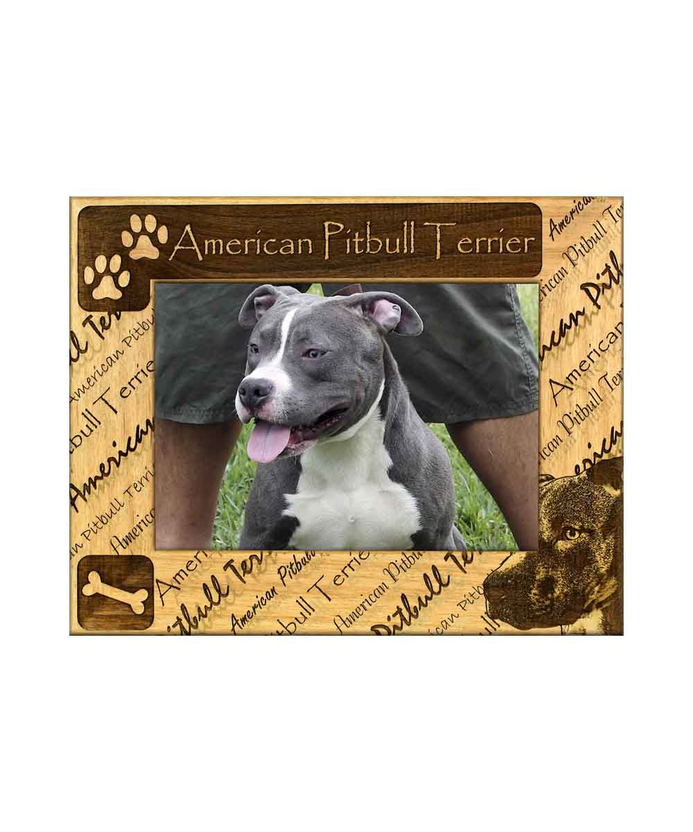 American Pitbull Terrier Picture Frame