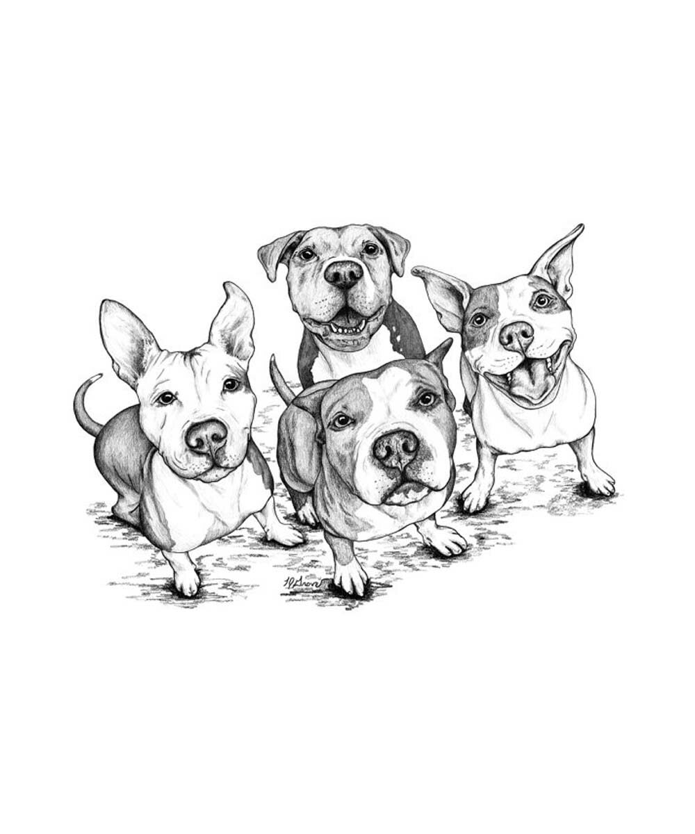 Four Pittie Friends Pit Bull Print