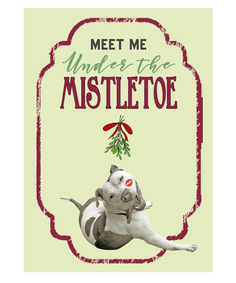Meet Me Under the Mistletoe Pit Bull Holiday Cards (Pack of 10)