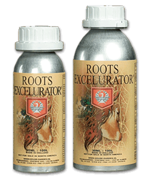 HOUSE AND GARDEN - ROOTS EXCELERATOR GOLD 1L