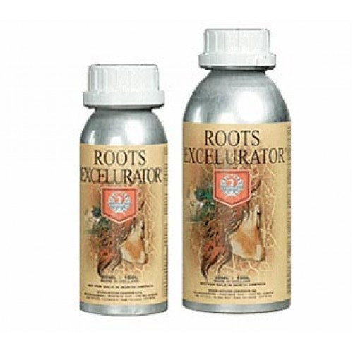 HOUSE AND GARDEN - ROOTS EXCELERATOR GOLD 500ML