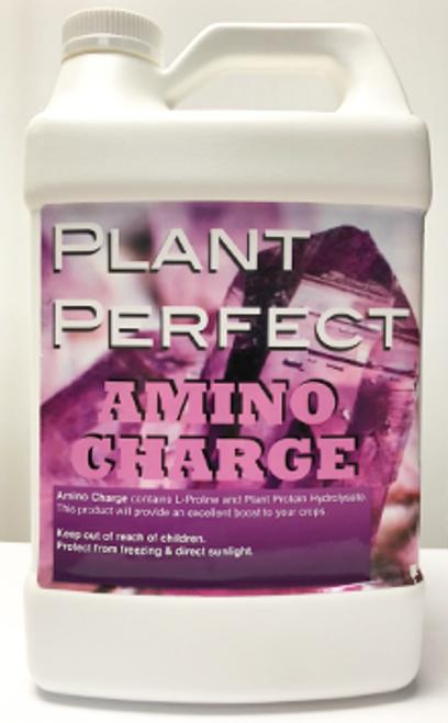 PLANT PERFECT AMINO CHARGE QT