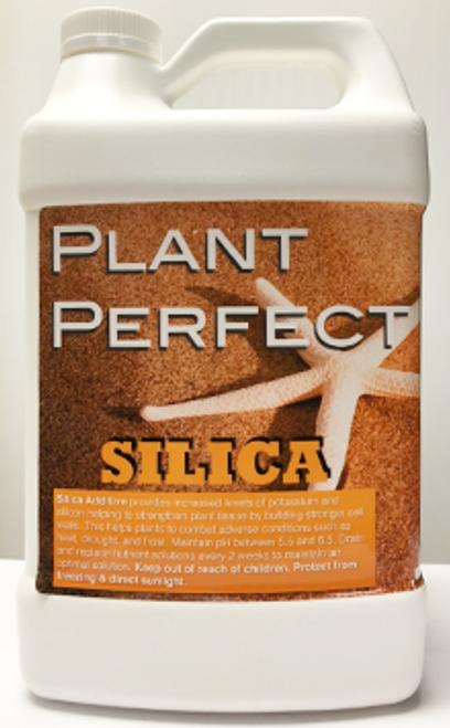 PLANT PERFECT SILICA QT