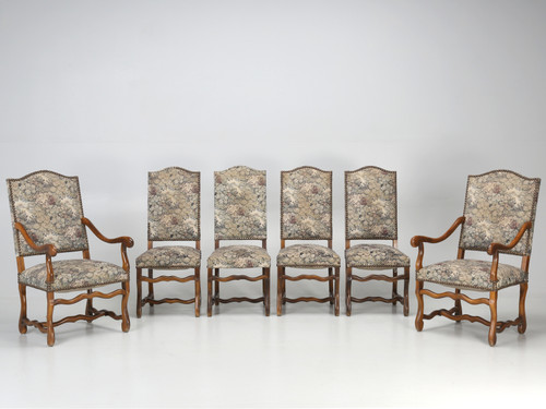 Set of 6 French Dining Chairs Os De Mouton Set Front