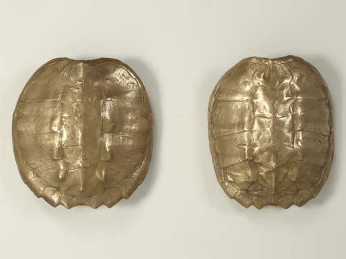 Pair of Bronzed Turtle Shell Sconces from the 1970s