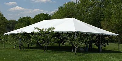 frame tent covering trees to display its size
