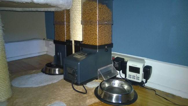 Two  CSF-3 cat feeders to cat play stand