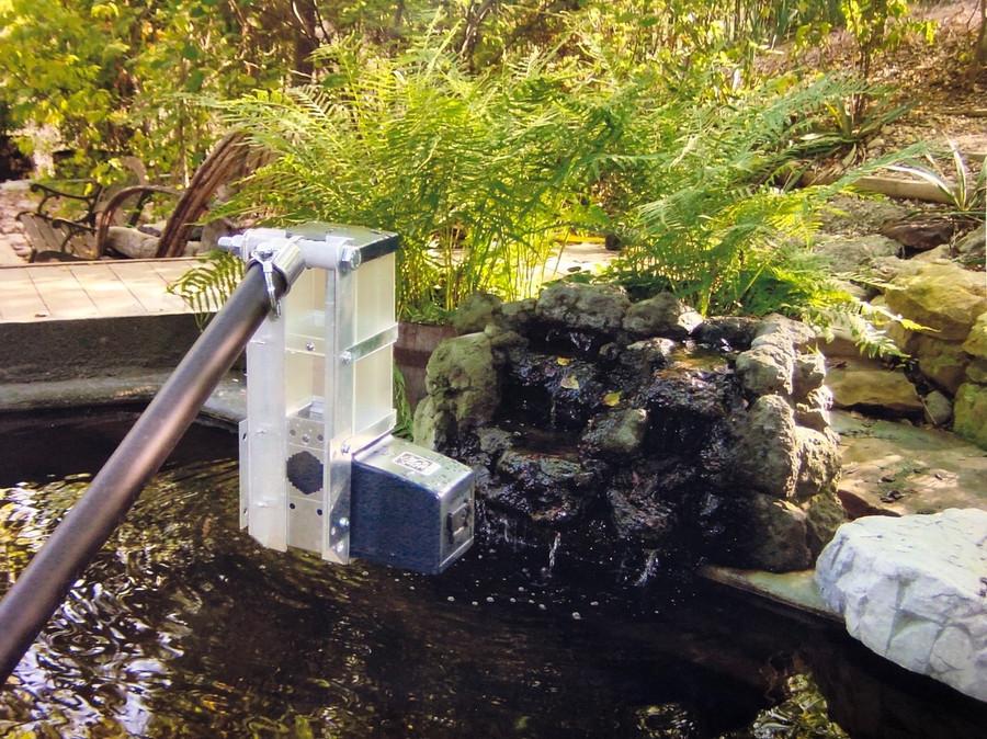 KSF-2 on TX pond