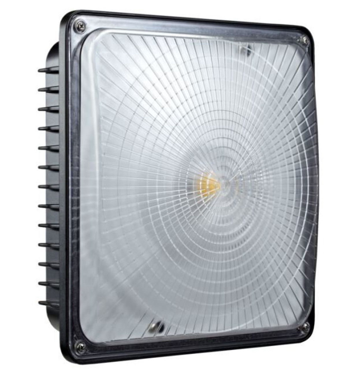 Slim Line Canopy LED Light- lens