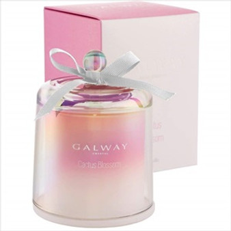 Galway Crystal Cactus Blossom Scented Bell Jar Candle