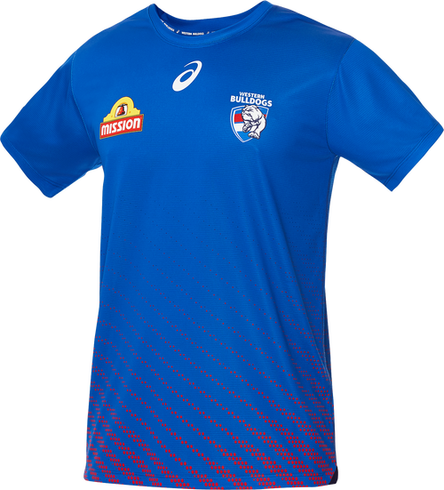 Western Bulldogs 2020 Asics Training T-Shirt - Blue