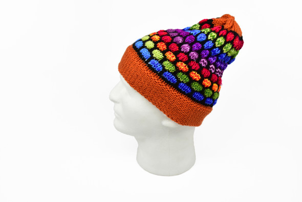 Alpaca Knit Beanie Multicolored Tinky Turtle Pattern