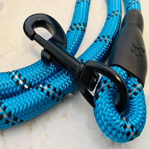 5 Ft Reflective Dog Leash