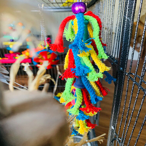 Color Tie Rope Bird Toys