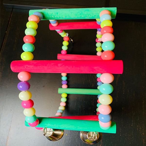 Color Small Circle Toy for Pet