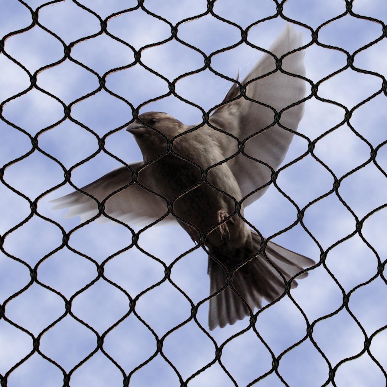 No Knot Bird Netting