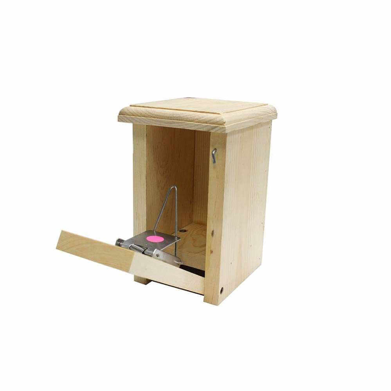 English Bird House Sparrow Trap