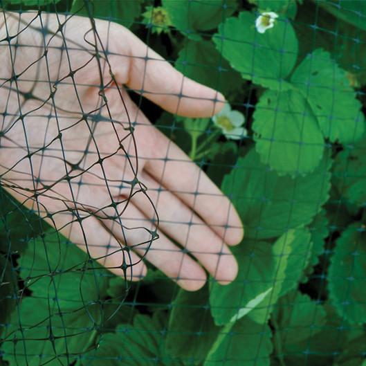 Garden Netting Garden Mesh Tree Netting Bird B Gone