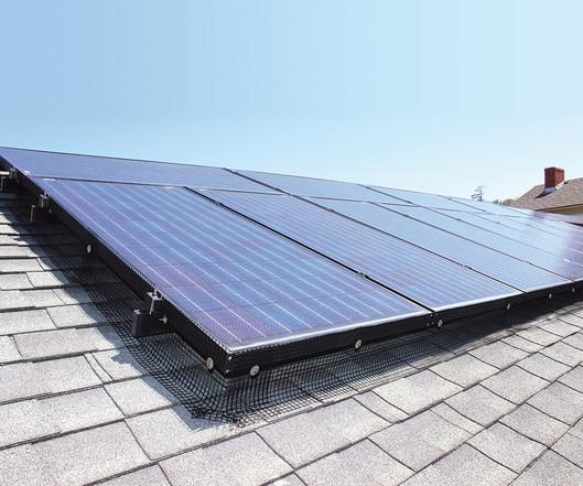 Solar Panel Bird Deterrent Clips Bird B Gone