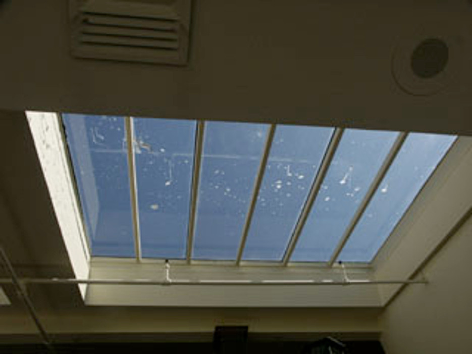 How to Keep Birds Away from Your Skylights - Bird B Gone, Inc.