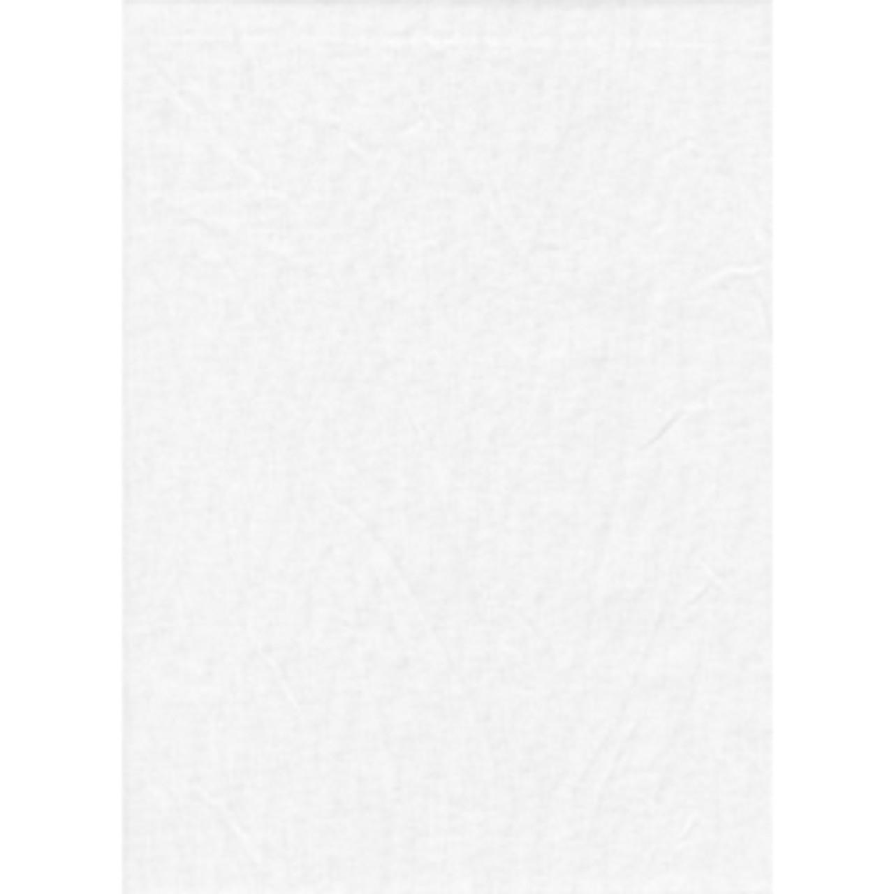 ProMaster Solid Studio Backdrop 10' x 20' White