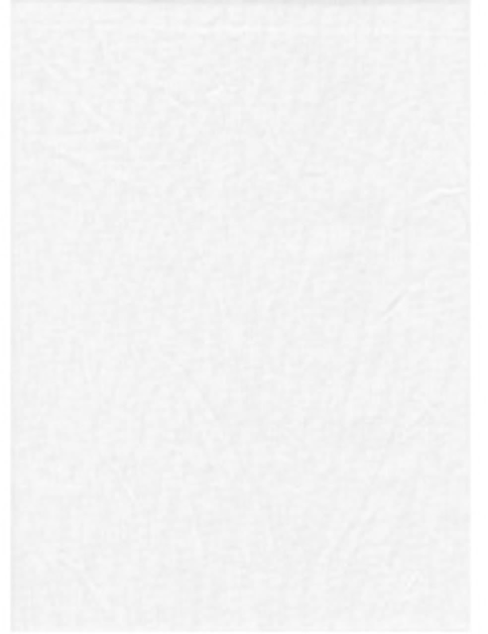 ProMaster Solid Studio Backdrop 10' x 12' White