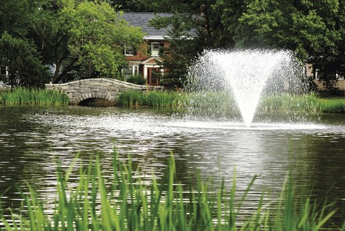 Otterbine Aerating Fountain 2 HP View Product Image