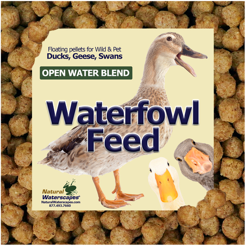 Waterfowl feed for ducks geese and swans View Product Image