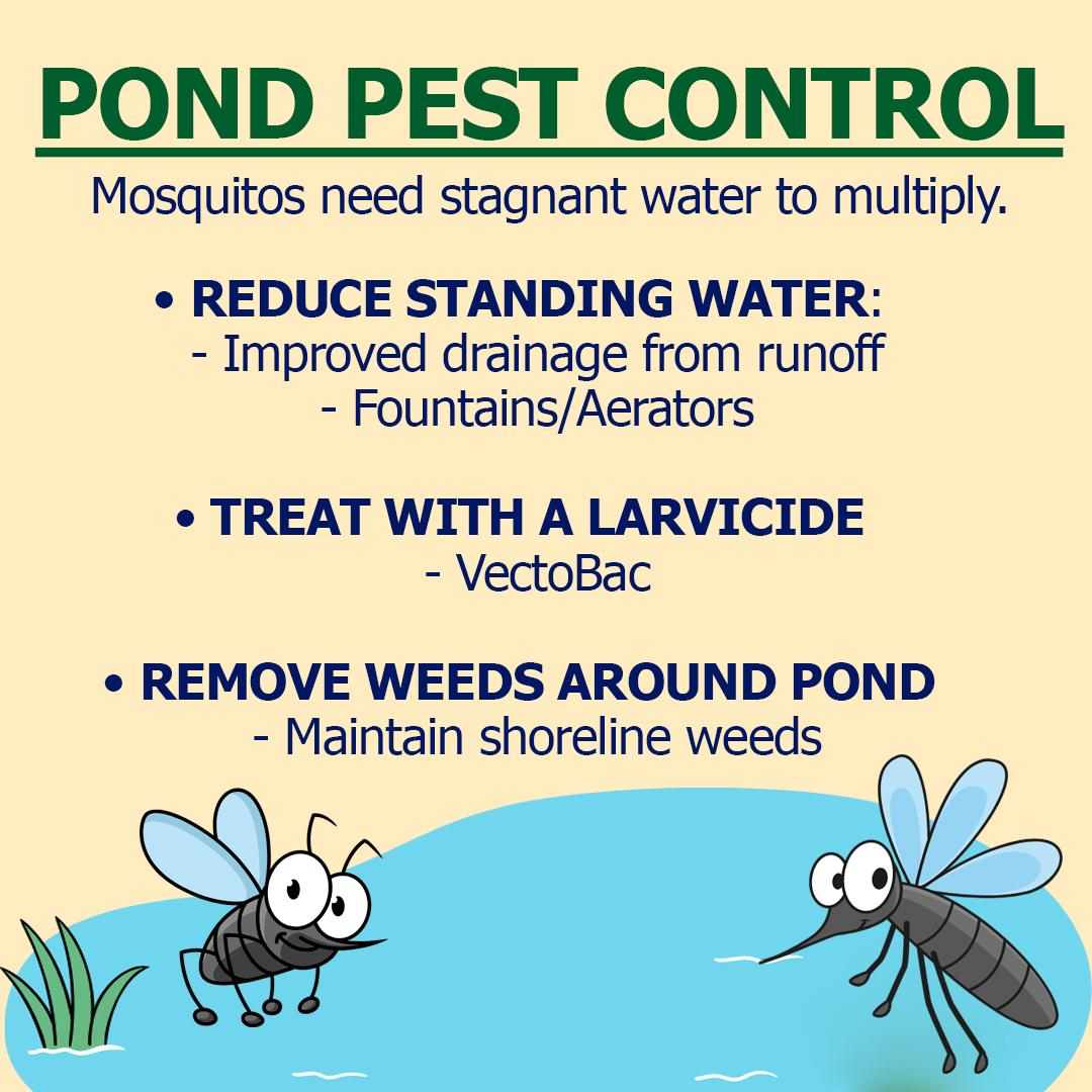 pond-pest-control-vectobac-mosquito.jpg