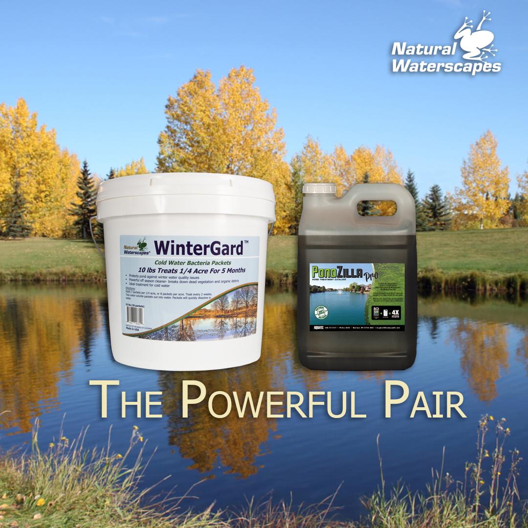 powerful-pair-winter-pond-treatment.jpg