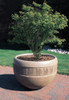 Decorative Round Outdoor Concrete Planter TF4220 with Tree