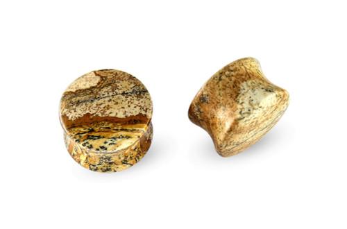 Pair Jasper Picasso Stone Plugs