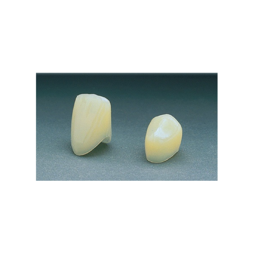 Polycarbonate Crowns  100