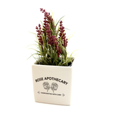 Schitt's Creek, Rose Apothecary, indoor planter, container